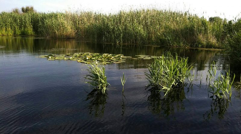 Zone arondate pescuitului familial în Delta Dunării