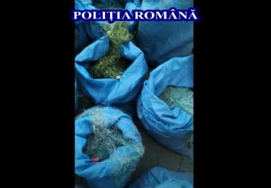 Video. Percheziții pe linie piscicolă. 382 de plase confiscate